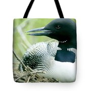 Common Loon, La Mauricie National Park Tote Bag by Philippe Henry