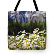 Daisies At Mount Robson Provincial Park Tote Bag by Elena Elisseeva