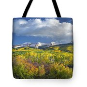 East Beckwith Mountain Flanked By Fall Tote Bag by Tim Fitzharris