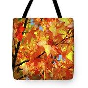 Fall Colors Tote Bag by Carlos Caetano