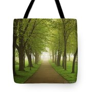 Foggy Park Tote Bag by Elena Elisseeva