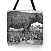 Hippopotamus Tote Bag by Granger