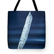 Icicle In Reverse Tote Bag by Christine Till