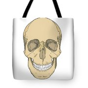 Illustration Of Anterior Skull Tote Bag by Science Source