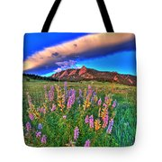 In The Moment Tote Bag by Scott Mahon