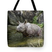 Indian Rhinoceros Rhinoceros Unicornis Tote Bag by Konrad Wothe