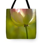 Lotus Detail Tote Bag by Heiko Koehrer-Wagner