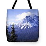 Mountain landscape Tote Bag by Elena Elisseeva