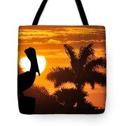 Pelican At Sunset Tote Bag by Dan Friend