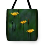 Summer Dining Tote Bag by Ron Jones