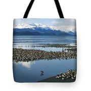 Western Sandpiper Calidris Mauri Flock Tote Bag by Michael Quinton