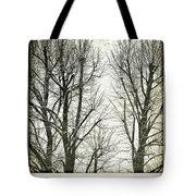 Winter Trees Tote Bag by Silvia Ganora