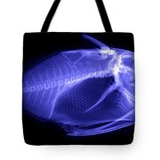 X-ray Of A Clown Triggerfish Tote Bag by Ted Kinsman