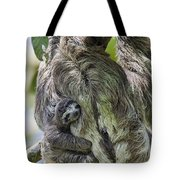 Brown-throated Three-toed Sloth Tote Bag by Suzi Eszterhas
