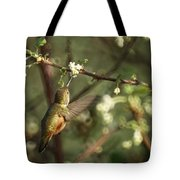 Hummingbird Tote Bag by Ernie Echols