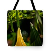 20120915-dsc09868 Tote Bag by Christopher Holmes
