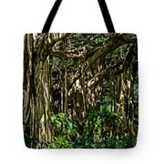 20120915-dsc09877 Tote Bag by Christopher Holmes