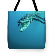 Saltwater Crocodile Crocodylus Porosus Tote Bag by Mike Parry