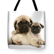 Pug And English Mastiff Puppies Tote Bag by Jane Burton