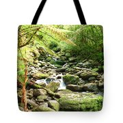 Stream Tote Bag by MotHaiBaPhoto Prints