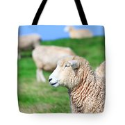 Sheeps Tote Bag by MotHaiBaPhoto Prints