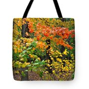 A Blustery Autumn Day Tote Bag by Frozen in Time Fine Art Photography