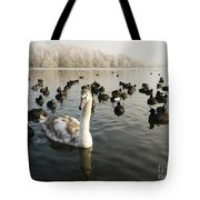 A Cygnets First Winter Tote Bag by John Chatterley