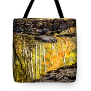 A Moment Of Reflection Tote Bag by Mary Amerman