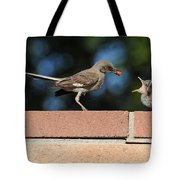 A Mothers Work Is Never Done Tote Bag by Lynn Bauer