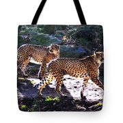 A Pair Of Cheetah's Tote Bag by Bill Cannon
