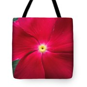 A Red Vinca Flower Tote Bag by Chad and Stacey Hall