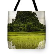 A Rice Field In Asia Tote Bag by Nathan Lau