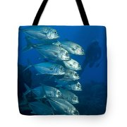 A School Of Bigeye Trevally, Papua New Tote Bag by Steve Jones