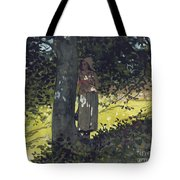 A Shady Spot Tote Bag by Winslow Homer