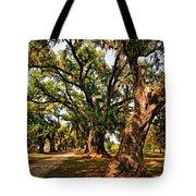 A Southern Stroll Tote Bag by Steve Harrington