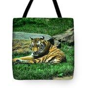 A Tiger's Gaze Tote Bag by Paul Ward
