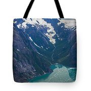 Alaska Coastal Tote Bag by Mike Reid