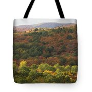 Algonquin in Autumn Tote Bag by Cale Best