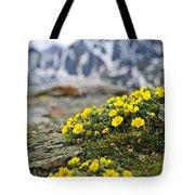 Alpine Meadow  Tote Bag by Elena Elisseeva