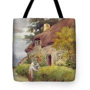 An Evening Gossip Tote Bag by Joshua Fisher