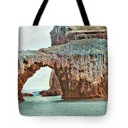 Anacapa Island 's Arch Rock Tote Bag by Cheryl Young