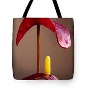 Anturium Tote Bag by Stelios Kleanthous