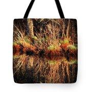 April's Pond Tote Bag by Karol  Livote