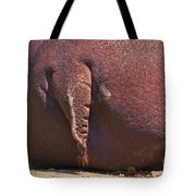 Arriere-train Tote Bag by Aimelle