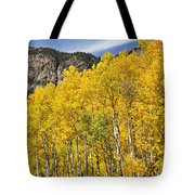 Aspen 7 Tote Bag by Marty Koch