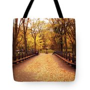 Autumn - Central Park - New York City Tote Bag by Vivienne Gucwa
