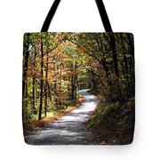 Autumn Country Lane Tote Bag by David Dehner