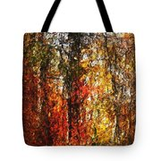 Autumn In The Woods Tote Bag by David Lane
