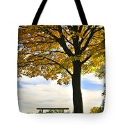 Autumn Park Tote Bag by Elena Elisseeva