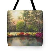 Autumn Sunset Tote Bag by Diane Romanello